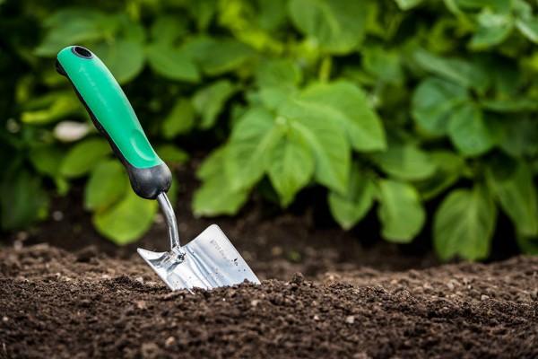 Création et entretien d'espaces verts et jardins